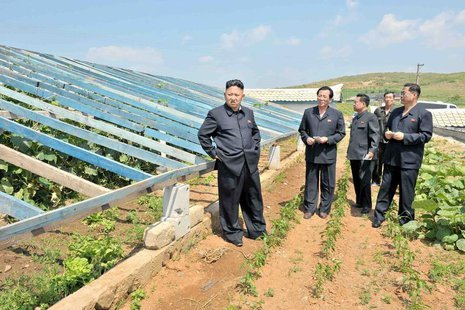 North Korean leader Kim Jong-un (L) visits vegetable greenhouses at the Songhak Co-op Farm in Anju City, South Pyongan Province, in this und