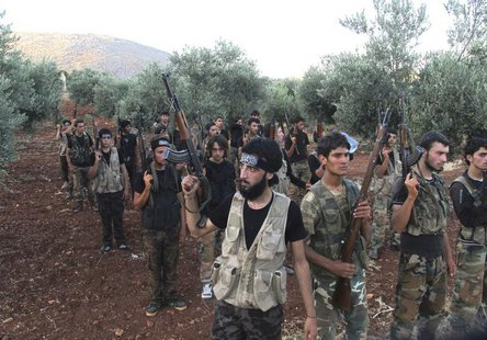 Free Syrian Army fighters, holding their weapons, stand during military training north of Idlib July 7, 2013. REUTERS/Abdalghne Karoof