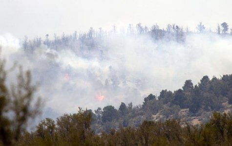 The Carpenter 1 wildfire burns in Kyle Canyon on Mount Charleston, about 25 miles (40 km) northwest of Las Vegas, Nevada, July 9, 2013. REUT