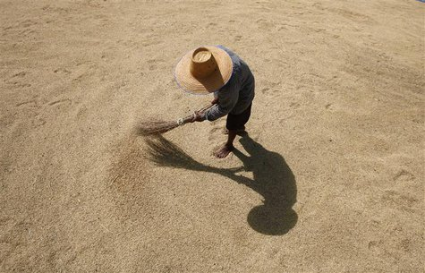 A farmer dries rice grains in Buriram province, 410 km (255 miles) northeast of Bangkok, in this November 17, 2007 file photo. REUTERS/Sukre