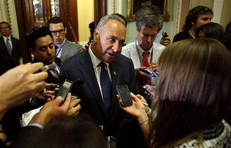 Senator Chuck Schumer (D-NY) speaks to reporters in the Capitol Hill in Washington July 16, 2013. REUTERS/Kevin Lamarque