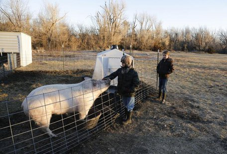 Third grade students Cody Eye and Elizabeth Harder feed the hogs at the Walton Rural Life Center Elementary School, in Walton, Kansas, Janua