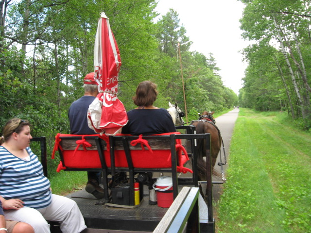 "Horse drawn carriage rides during the ""Taste of Dorset"""