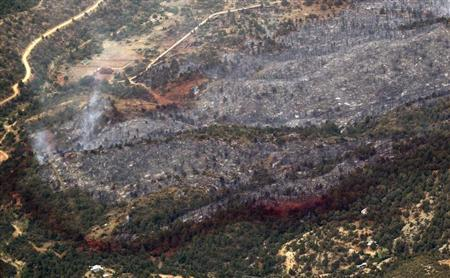 An aerial view of a strip of fire retardant near Yarnell, Arizona separating the burned area from the green area is seen on July 1, 2013. Credit: Reuters/Rick Wilking