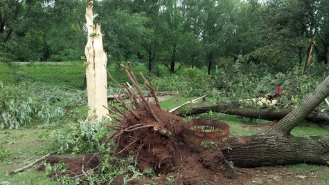 Storm damages parts of the Apple Creek Campground in Wrightstown on August 7, 2013. (Photo by: Jeff Flynt).