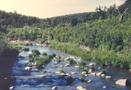Pembina River Gorge
