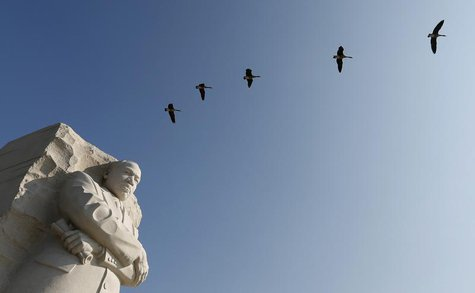 Geese fly over the the Martin Luther King Jr. Memorial in Washington August 20, 2013. REUTERS/Kevin Lamarque