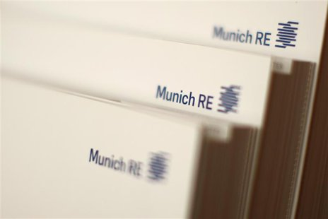 File photo of books of world's biggest reinsurer, Munich RE (Muenchener Rueck) pictured in a Munich Re office building in Munich November 5,