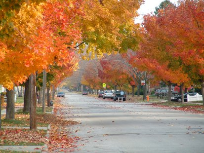 Autumn in Green Bay (Photo by: Dreemzkayp/Creative Commons).