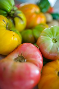 What some tomatoes might look like.