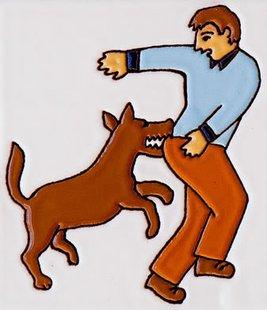 dog bite