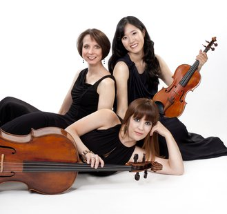 The University of South Dakota Rawlins Piano Trio. (USD.edu)