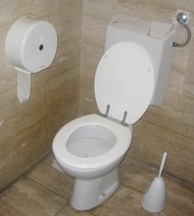 A toilet with a flush water tank. (Photo by: Jarlhelm/Creative Commons).