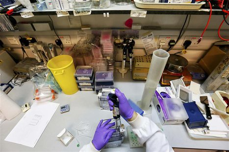 A scientist separates proteins by gel electrophoresis in a lab at the Institute of Cancer Research in Sutton July 15, 2013. REUTERS/Stefan W