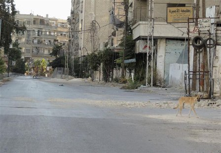 A dog walks along a damaged street in the Damascus suburb of Zamalka October 3, 2013. REUTERS/Bassam Al Arbeeni