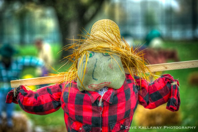 Scarecrows dotted the Fern/Oak Island Park area..!!