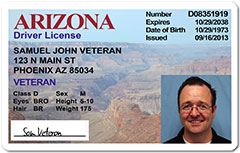 Arizona plans to require voters to show proof of citizenship to vote in state polls. AZ.dot.gov