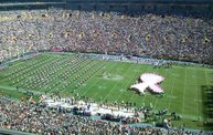Green & Gold Fan Zone Coverage of the 2013 Season 20