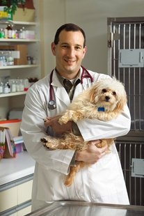 Veterinary Medicine  Courtesy Purdue University Vet Program