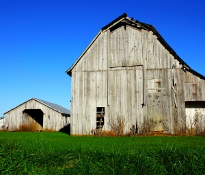 Farm buildings - KELO file photo