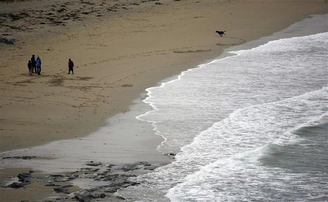 People with their dog walk on Towan Beach, in Cornwall, south west England October 27, 2013. REUTERS/John Voos