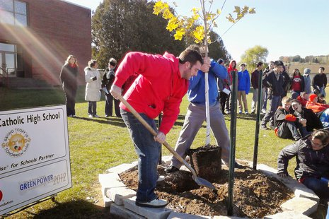 Teachers help plant a new maple tree at Newman Catholic High School, October 28 2013