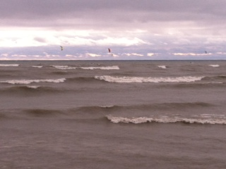 Kite boarders out in Lake Michigan off of south pier