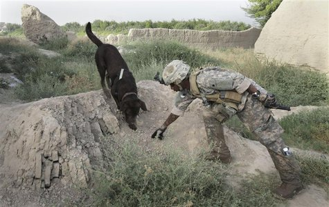 Dog handler Sergeant Justin McGhee of the US Army's 67th Engineer Detachment works with his dog Archie as they search for buried munitions n