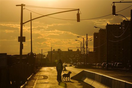 In this picture taken October 24, 2013 two men walk their dog down Shore Front Parkway in an area that was photographed almost a year ago bu