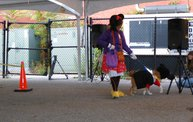 Doggie Costume Contest 2013 27