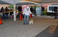 Doggie Costume Contest 2013 17