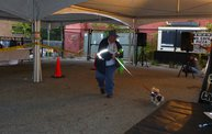 Doggie Costume Contest 2013 3