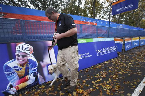 A security guard and bomb sniffing dog patrol the area near the finish line of the New York City Marathon in New York's Central park Novembe
