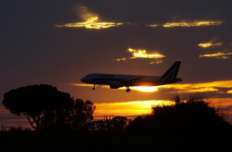 An Alitalia plane approaches to land at Fiumicino international airport in Rome October 14, 2013. REUTERS/Max Rossi