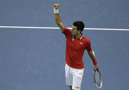Serbia's Novak Djokovic celebrates a point against Czech Republic's Radek Stepanek during their Davis Cup World Group final tennis match in