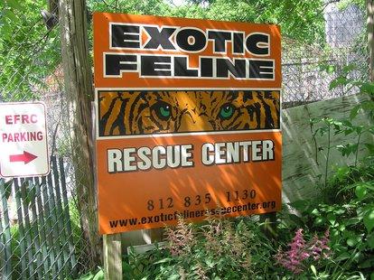 Exotic Feline Rescue