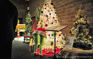 Festival of Trees Gala Kick Off 2013!!!: Cover Image