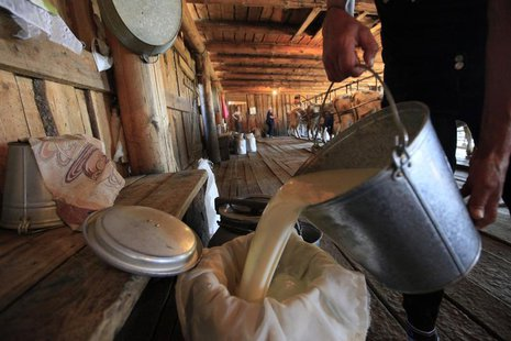 An employee pours milk as cows are milked in the background at the Antsiferovskoye Farm in the village of Antsiferovo, some 415 km (258 mile