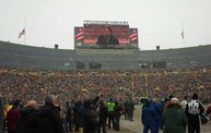 Green & Gold Fan Zone Coverage of the 2013 Season 4