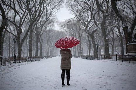 A woman stands with an umbrella during snowfall at Central Park in New York, December 17, 2013. REUTERS/Shannon Stapleton