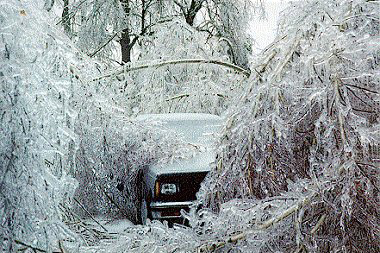 Ice Storm [Public domain], via Wikimedia Commons