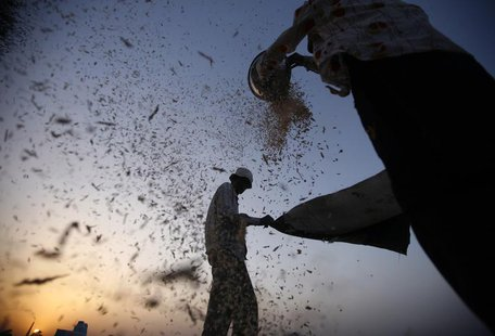 Labourers sift harvested wheat in a field on the outskirts of the western Indian city of Ahmedabad March 14, 2013. REUTERS/Amit Dave