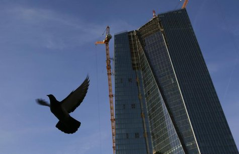 A pigeon flies next to the construction site of the new European Central Bank (ECB) headquarters in Frankfurt, December 3, 2013. REUTERS/Kai