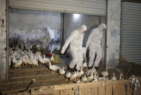 Health officials in protective suits transport sacks of poultry as part of preventive measures against the H7N9 bird flu at a poultry market