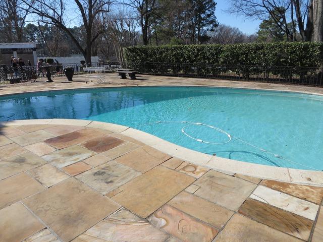 Elvis' Pool