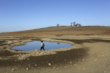 A visitor walks near the receding waters at Folsom Lake, which is 17 percent of its capacity, in Folsom, California January 22, 2014. REUTER