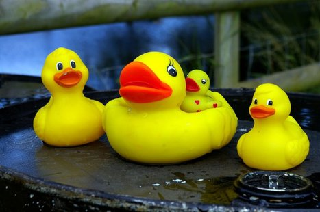 Rubber ducks (via Wikicommons.com)