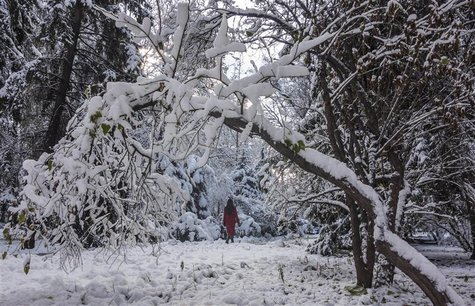 A woman walks across a snow-covered park in Almaty November 21, 2013. REUTERS/Shamil Zhumatov