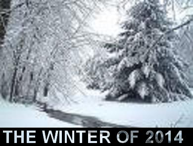 Its been the coldest and snowiest winter in decades.