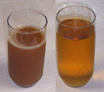 Apple cider and apple juice.